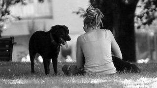 Black dog and girl