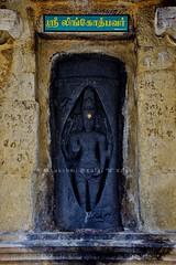 """Lingodbhavar @ Abhiramesvarar Temple- Tiruvamattur - Villupuram - Tamil Nadu. (Kalai """"N"""" Koyil) Tags: nikon d 5200 kalai n koyil 2016 tokina 1116mm 18140mm tiruvamattur abhiramesvarar perumanadigal thiruvamathur villupuram gingee tamilnadu southindiantemple architecture parantakai sundarachola rajarajai gomadhupuram nadunadu21st shiva"""