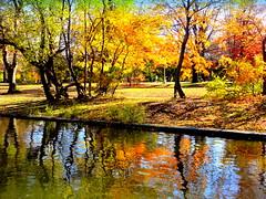 Lake Shore (dimaruss34) Tags: newyork brooklyn dmitriyfomenko image fall autumn prospectpark reflection