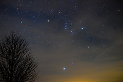 Orion Rising (Phil Ostroff) Tags: astronomy astrophotography orion sirius night sky