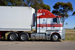Wickhams (quarterdeck888) Tags: trucks transport semi class8 overtheroad lorry heavyhaulage cartage haulage bigrig jerilderietrucks jerilderietruckphotos nikon d7100 frosty flickr quarterdeck quarterdeckphotos roadtransport highwaytrucks australiantransport australiantrucks aussietrucks heavyvehicle express expressfreight logistics freightmanagement outbacktrucks truckies kw k200 kenworth bigcab bigcabk200 cabover aerodyne wickhams wickhamfreightlines bdouble refrigerated