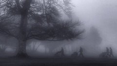 Golfers in the fog (Frank Fullard) Tags: frankfullard fullard golf fog surreal blackandwhite tree mist haze weather abstract silhouette sport dark climate climatic atmosphere atmospheric