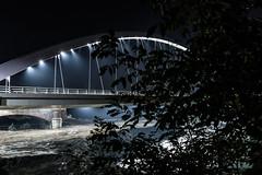 Ponte Meier Alessandria (cristianmighetti) Tags: ponte bridge meier alessandria lisandria piemonte piedmont alberi tree tanaro fiume river light luci arch fog nebbia canon 7d 1755 28 benro travel