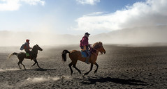 Indonesia. Galopando por el mar de lava, volcán Bromo. Explore 06.12.2016 (fdecastrob-off-) Tags: java bromo indonesia horse galope d750