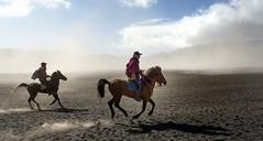 Indonesia. Galopando por el mar de lava, volcn Bromo. Explore 06.12.2016 (fdecastrob) Tags: java bromo indonesia horse galope d750