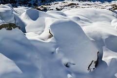 La Traccia nei Massi (Roveclimb) Tags: mountain montagna alps alpi escursionismo hiking walking trekking svizzera chiera suisse leventina airolo faido laghichiera laghidichiera winter inverno schnee neve snow neige catto lurengo alpedichiera shadow ombra darkness traccia track trail sentiero path pista orme feet print rock rocce stone massi pietre wild animal slevaggio animale