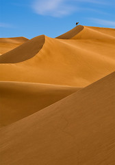 Camel on dunes 2 (Brian L55) Tags: morocco mhamid dunes camel sky blue yellow shape