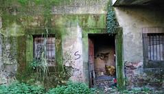 verde y abandonada __ green and abandoned (Roger S 09) Tags: asturias villaviciosa casa casaabandonada