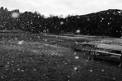 KLIS4280_S (Konrad Lembcke) Tags: geysir abstract minimal landscape black white monochrome water drops fuji x xe 2 park bench iceland island travel landschaft nature simple