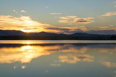 from the ground floor 3 (phacelias) Tags: lagodimontepulciano lake meer sunset zonsondergang tramonto oranje arancione orange quiet rust calma riflesso riflection weerspiegeling