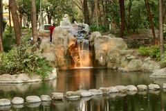 Parque Masayoshi Ohira Coyoacán C D M X (davidrove65) Tags: ef28135mmf3556isusm canon eosrebelt4i