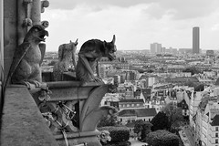 Meeting at the top level in Paris (jmvnoos in Paris) Tags: blackandwhite bw paris france blackwhite nikon noiretblanc meeting nb notredame gargoyle gargoyles notredamedeparis gargouille 1000views noirblanc toplevel gargouilles 2000views 30faves 5000views 3000views 5faves 100faves 50faves 4000views 6000views 10faves 20faves 40faves 7000views 8000views 200faves 60faves 150faves 160faves 110faves d700 130faves 140faves 120faves jmvnoos 10favesext 5favesext 180faves 170faves 190faves