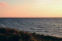 Windmils in Solstice sunset (inca789) Tags: sunset orange nikon solstice malm goldenhour resund vattenfall oeresund vindkraftverk vindmllor lillgrund twilightsunset