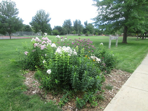 Photo - N. Palo Park flower bed 2