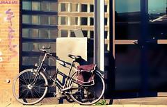 Culto a la bicicleta