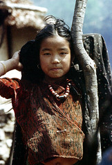 21-531 (ndpa / s. lundeen, archivist) Tags: nepal portrait people color film girl face rural 35mm necklace beads village child 21 nick earrings nepalese 1970s 1972 himalayas younggirl villager nepali dewolf piercednose mountainvillage ruralvillage nickdewolf photographbynickdewolf ruralnepal reel21 hillyregion