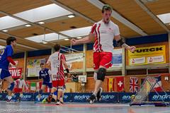 (DavidSandoz) Tags: european etc championships tchoukball europameistershaft etc2014