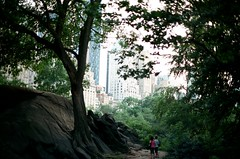 Through the Trees (september.) Tags: nyc newyorkcity trees summer film 35mm buildings centralpark manhattan midtown tall canonae1 59thstreet canonfd50mmf14 canonfd fujicolorpro400h