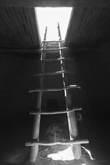 The ladder inside the kiva (julesnene) Tags: travel newmexico rock climb pueblo ceremony canyon adventure ladder spiritual kiva bandeliernationalmonument alcovehouse frijolescanyon ancientvillage religiousritual canoneos50d ceremonialcave julesnene juliasumangil ancestralpueblopeople insideakiva canonlensefs1022mmf3545usm foursteepladders 140feetclimb