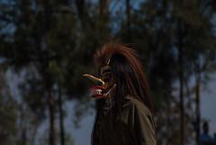 Tastoanes, Cerro de la Reyna Tonala (raulmacias) Tags: mexico mask jalisco celebration masks cerro disfraz mascara reyna mascaras celebracion tonala tastoanes cerrodelareyna raulmacias tastuanes raulmaciascommx httpwwwraulmaciascommx julio2014