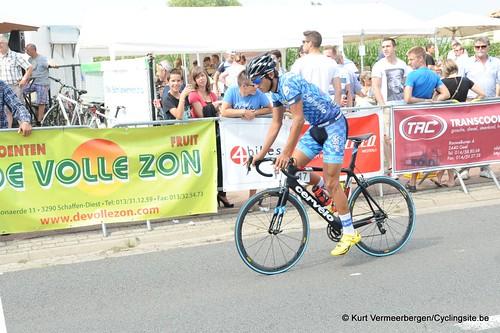 Geel Oosterlo  (8)