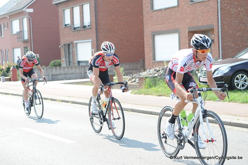 Geel Oosterlo  (73)