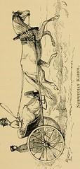 Anglų lietuvių žodynas. Žodis stirrup-shaped reiškia ąselės formos lietuviškai.