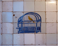 Song bird in a cage (daviddb) Tags: kitchen dutch amsterdam ceramic tiles