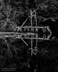 DSC_9843 (Forensicdoc1) Tags: wood blackandwhite bw sc water pier pond nikon lexington southcarolina monotone gibsonpond d7000 gibsonpondpark