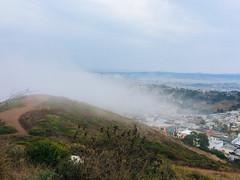 Mt Davidson (Laura Steffan) Tags: sanfrancisco california travel fog foggy sanfran mtdavidson iphone vsco iphone5s