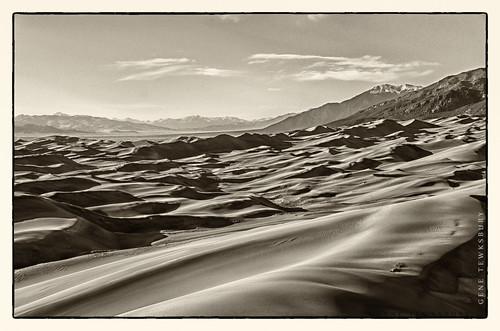 Sand Dunes in Sepia