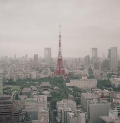 PhoTones Works #5649 (TAKUMA KIMURA) Tags: city tower japan landscape tokyo town scenery landmark olympus 日本 東京 six 東京タワー 風景 kimura 街 景色 町 takuma 琢磨 木村 ランドマーク photones