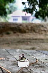 Aidilfitri 2014 (phalinn) Tags: family people baby festival kids canon religious eos 50mm events muslim islam eid sigma son malaysia gathering kualalumpur raya kampung hari adults kl 1022mm salam zahir aidilfitri melayu malay cheras ampang maaf balik syawal eidulfitri keluarga 2014 morib batin phalinn beranang
