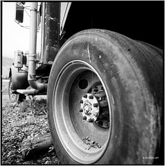 Truck_Hasselblad (ksadjina) Tags: 6x6 film analog austria blackwhite scan oldtimer rotten tyrol haiming hasselblad500cm silverfast adoxaph09 nikonsupercoolscan9000ed carlzeissdistagon40mmf14 oiler69