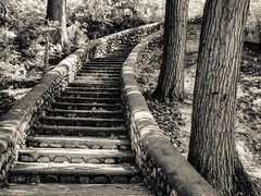 Moores Park steps (Podsville) Tags: summer michigan lansing august lansingrivertrail