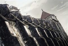 Basilique Sainte-Marie-Madeleine de Vzelay (Jrmy C. (Kodje)) Tags: france film canon silver de iso200 fuji superia f1 fujifilm bourgogne fd basilique 80200mm vzelay saintemariemadeleine canonf1old fd80200mm14l