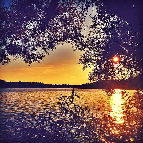 #Sunset with colors   @dashablefit @visitstockholm