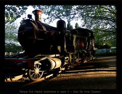 Parque eva hajduk locomotora a vapor II - Diaz De Vivar Gustavo (Diaz De Vivar Gustavo) Tags: parque de tren eva flickr gustavo imagenes 3333 vapor estación locomotora diaz ranelagh hajduk ferrocarriles vaporera vivar