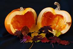 Pumpkin surprise (Nikon Guy 56) Tags: pumpkin leaves autumn stilllife nikon d60