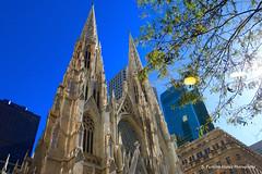 NYC - Saint Patrick's Cathedral (ssspnnn) Tags: saintpatrickscathedral saintpatrick iglesia igreja church arquitetura buildingsspnunes nunes snunes spereiranunes canoneos70d eua usa newyork nyc wow