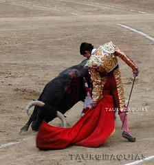 Recorte del novillero Luis Lpez en Acho (Vladimir Tern A.) Tags: toros corridadetoros toreros limaperu bullfighting bulls bullfighters