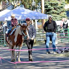 BVCOC 24th Annual Fall Harvest Festival (BabylonVillagePhotos) Tags: horse pony ride rides bvcoc babylon village chamber commerce annual fall harvest festival people kids fun food sales sidewalk street