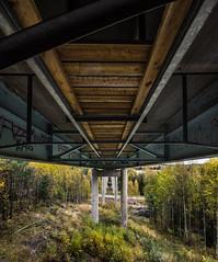 hi up under rows of woods, steelstructures and concrete pillars in the autumnforrest (Mange J) Tags: fs161016 bridge fotosondag fotosndag rad under vrmlandsln sverige se