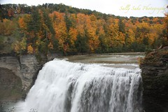 IMG_9618 (Sally Knox Sakshaug) Tags: letchworth state park new york fall autumn october colors leaf leaves orange yellow stone grey gray brown green red beautiful pretty scenic gorge ravine cliff wall edge side river water valley deep crevice waterfall white spectacular falls beauty middle large major mighty strong powerful impressive awe inspiring genesee portagecanyon