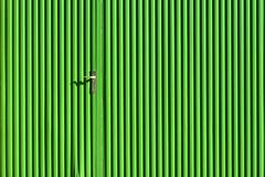 (agnes.mezosi) Tags: minimalism minimalist minimal minimalart minimalistic simplicity lessismore green