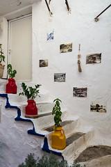 Decoration (Thomas Mulchi) Tags: parga epirus greece 2016 steps decoration photos plants plasticcontainers gr