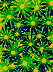 57763.20 Rudbeckia hirta (horticultural art) Tags: horticulturalart rudbeckiahirta rudbeckia flowers pattern psychedelic