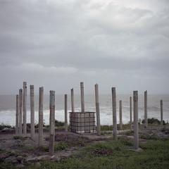 qube (Tom Kondrat) Tags: taiwan analogue film mamiya6 mediumformat 120 6x6 kodakportra160 before typhoon typhoonblues tomkondrat calmbeforethestorm seaside ocean sticks qube grey grass megi