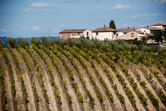 TuscanyUmbria-1007