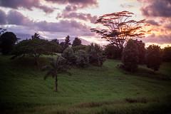 Kauai2016-51